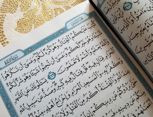 Reflections of the Quran